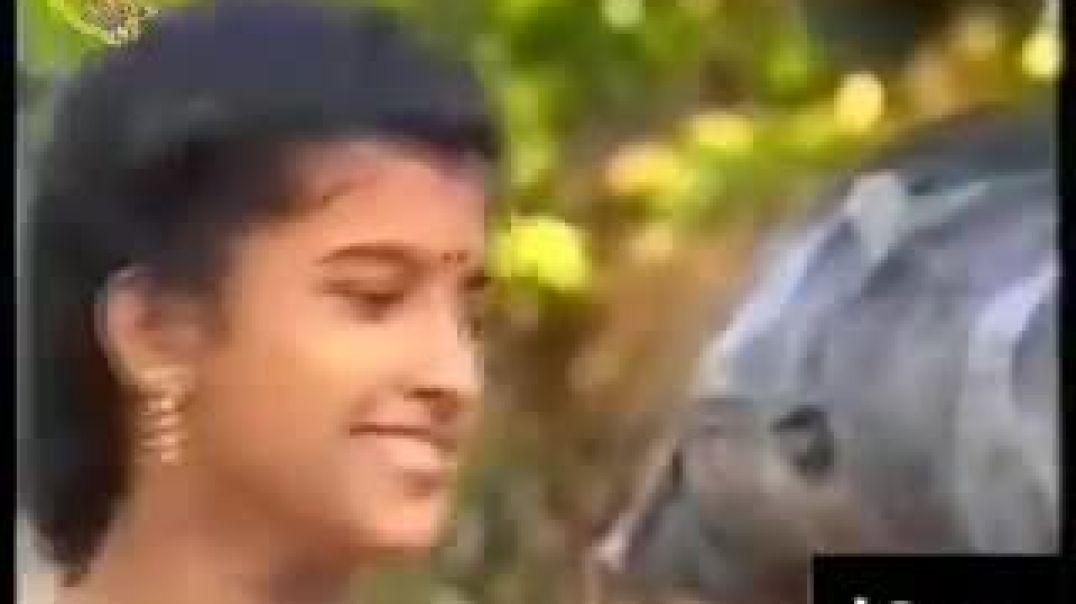 கோலமிட்ட கைகள் | koolamitta kaikal | tamil elam short films | தமிழீழக் குறும்படம்