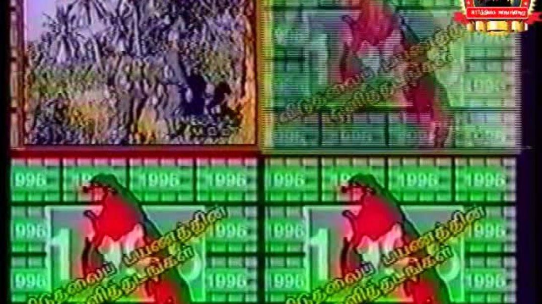 1996 முக்கிய நிகழ்வுகள்
