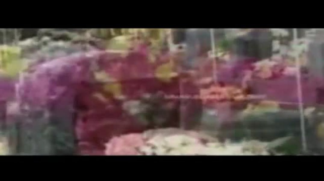 நிலாக் கால நேரம் - nilaak kaala neeram | original version