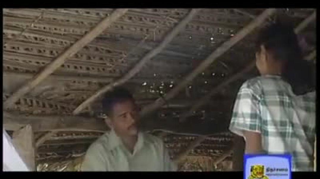 அமலி | தமிழீழக் குறும்படம் | amali  short film