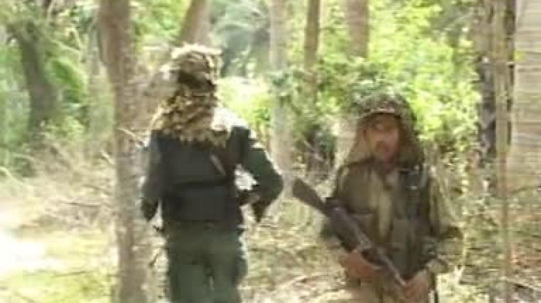 27-01-2009 களமுனை காட்சி | LTTE battlefield scene