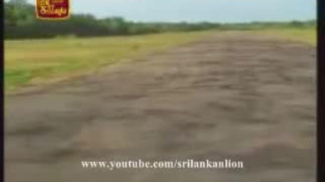 அம்பகாமம் தென்கிழக்கு வான்பொல்லம் | Ambakamam south east airstrip | ltte sky tigers | வான்புலி